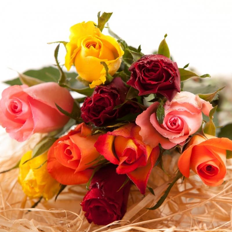 Sodastream - Bouquet de 10 roses