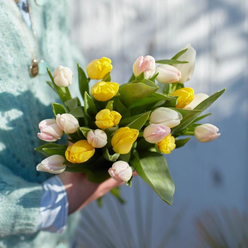 Botte de tulipes du printemps