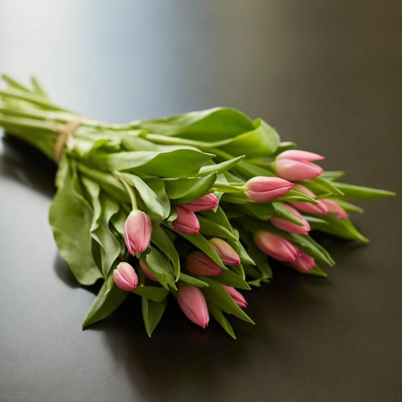 Botte de tulipes roses